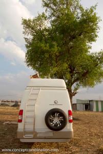 Campervan made on Tempo Traveller